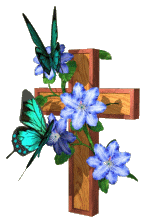 butterfly_cross