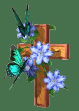butterfly_cross