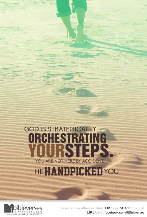 he-handpicked-you_500